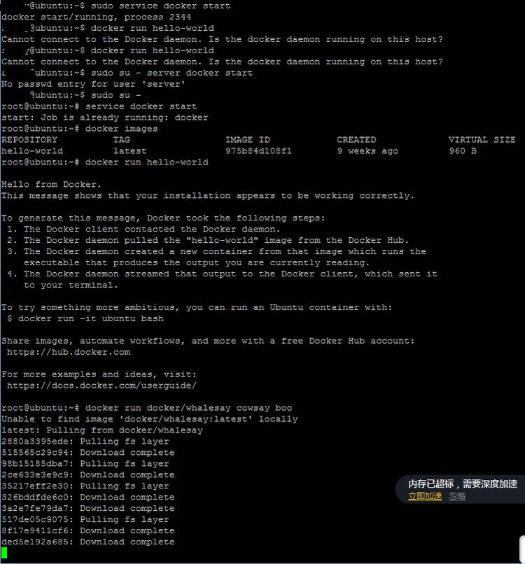 初次安装Docker 运行出现的问题。 - 牛牛 - 牛牛的博客